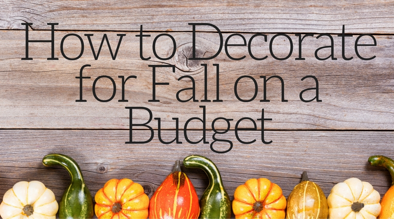 We often cut decorations and home decor out of the budget. They can be pricey and they are not a necessity. No problem, decorate for fall on a budget!